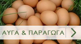Αυγά & Παράγωγα